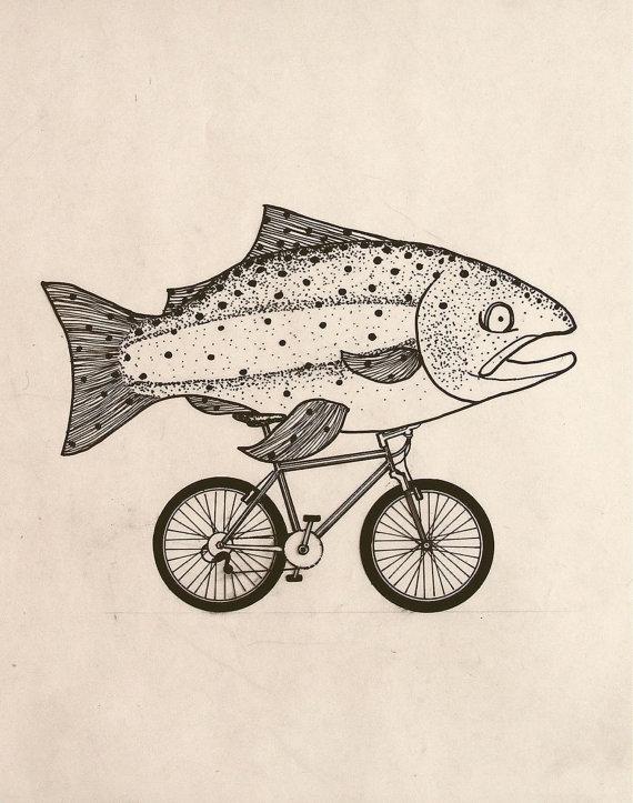 fishcycle