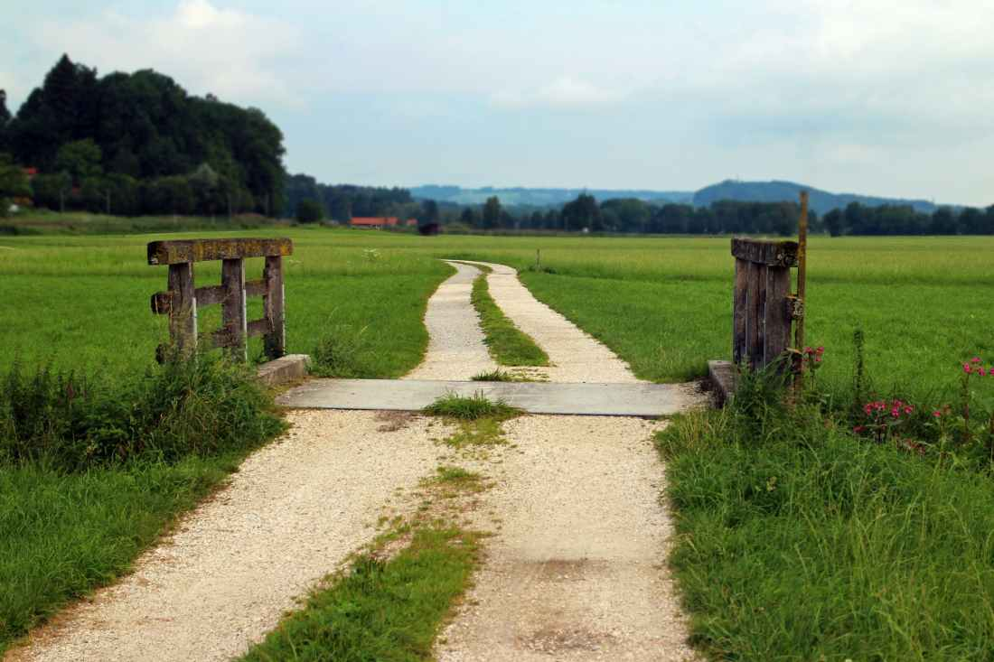 agriculture barn boardwalk bridge